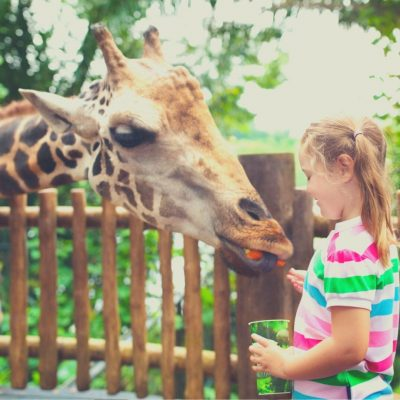 Hiring an Au Pair means giving your kids the flexibility to do what's best for them.